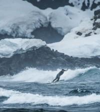 Ramon Navarro Surf en la Antartica